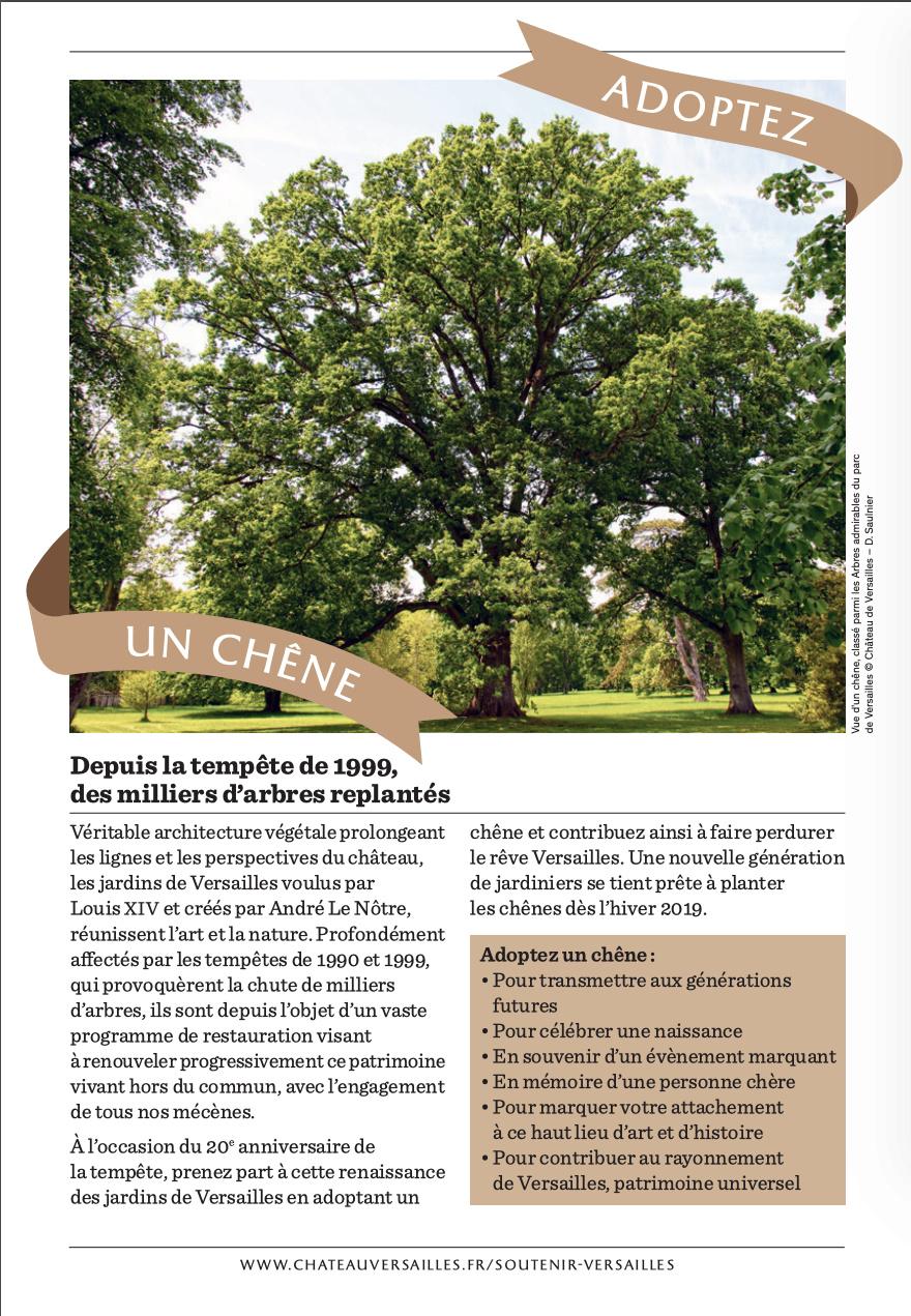 Les arbres admirables du domaine de Versailles Captu543