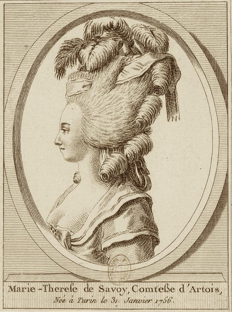 Marie-Thérèse de Savoie, comtesse d'Artois Comtes26