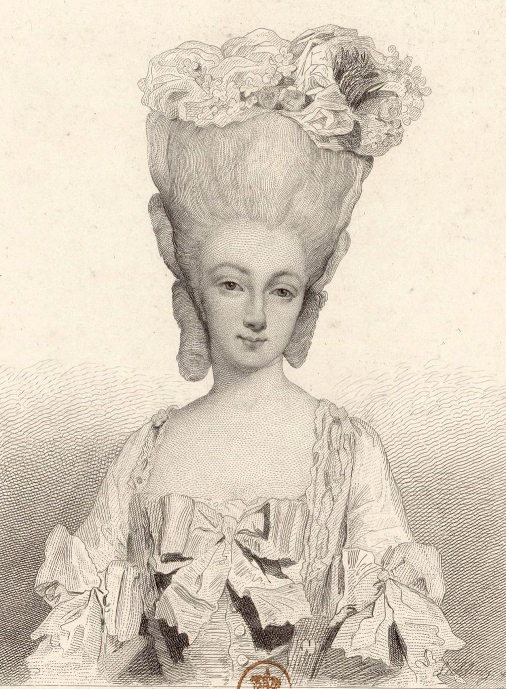 Marie-Thérèse de Savoie, comtesse d'Artois Comtes28