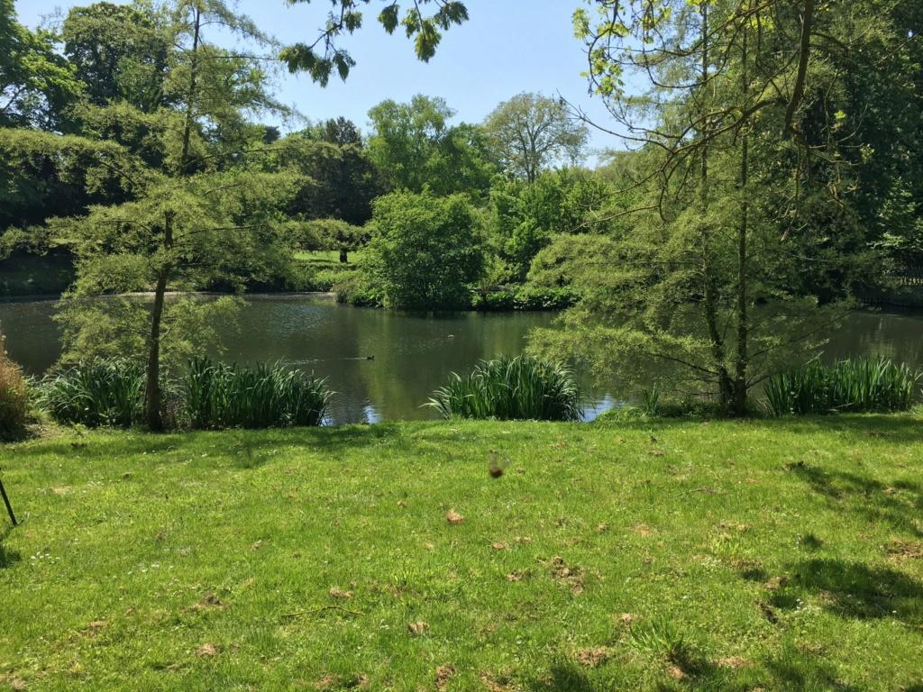 Le parc et le pavillon du comte de Provence et de la comtesse de Balbi à Versailles, aujourd'hui Parc Balbi Dcbynv11
