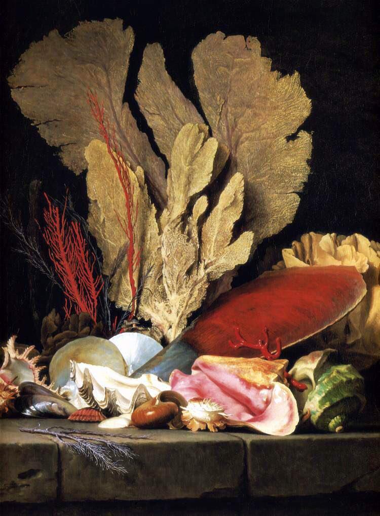 "Madeleine-Françoise Basseporte (1701-1780), première femme "" Peintre du jardin du Roi "" Dlm1po10"