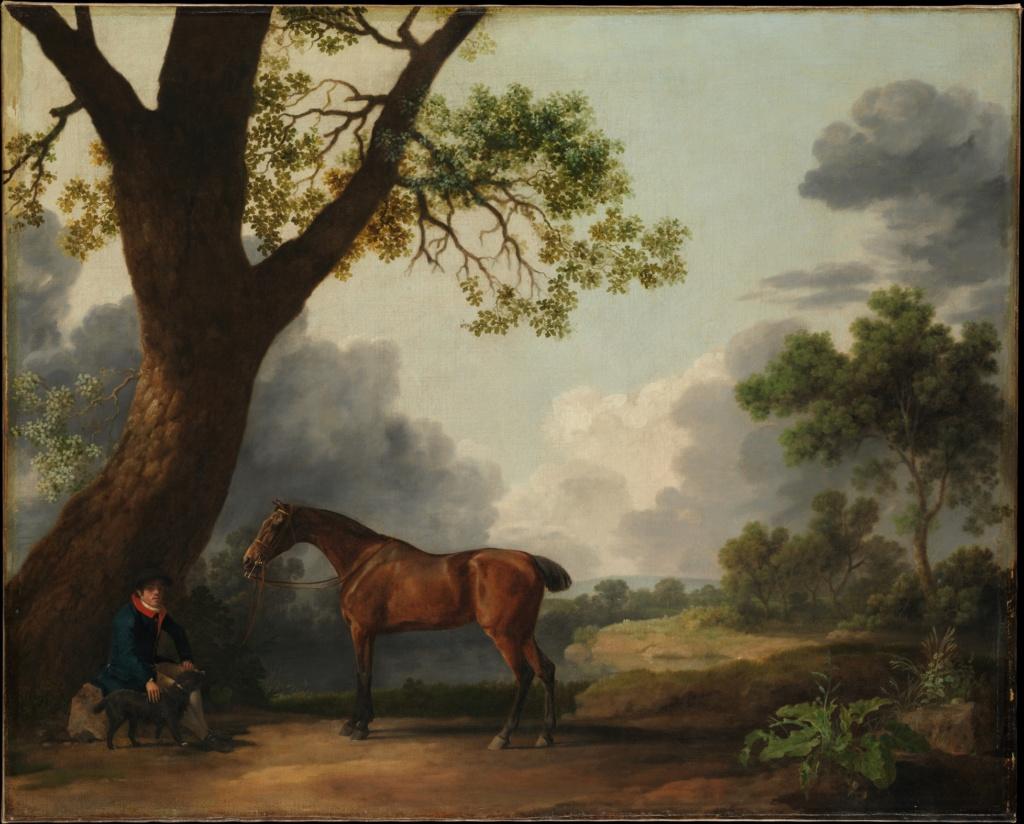 George Stubbs : artiste peintre et anatomiste.  Dp164810