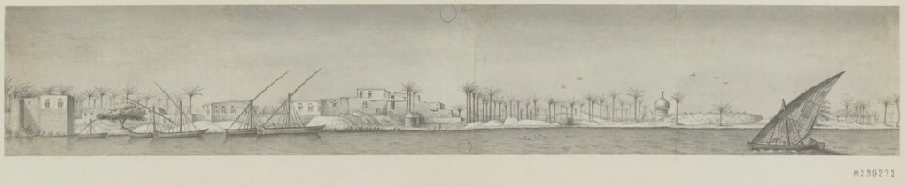 Bonaparte et la campagne d'Egypte (1798 - 1801) - Page 2 Enviro11