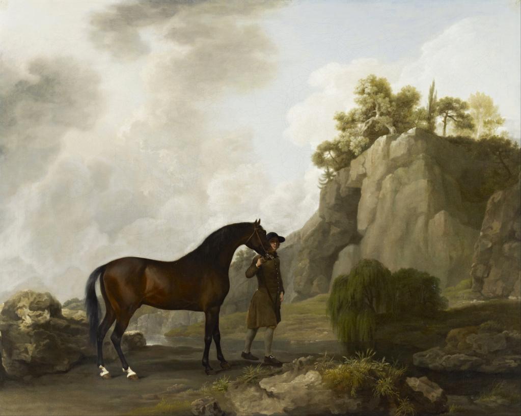 George Stubbs : artiste peintre et anatomiste.  George14