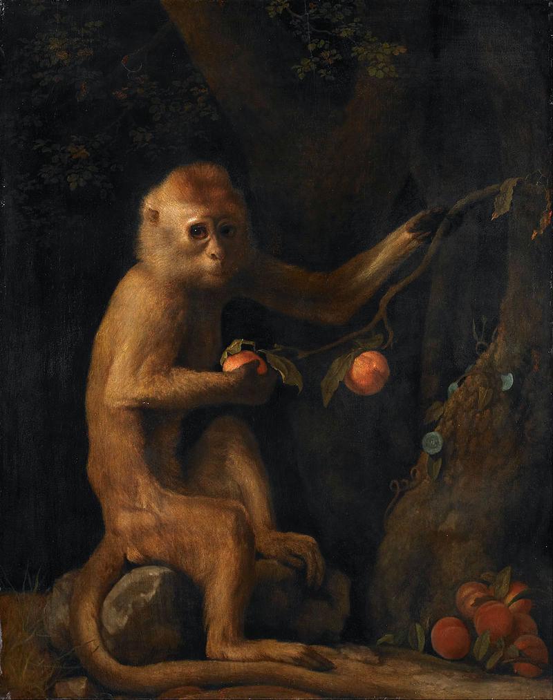 George Stubbs : artiste peintre et anatomiste.  George15