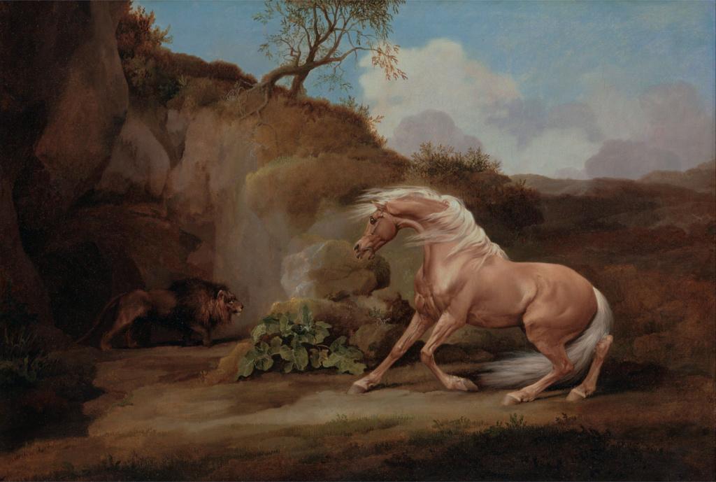 George Stubbs : artiste peintre et anatomiste.  George16
