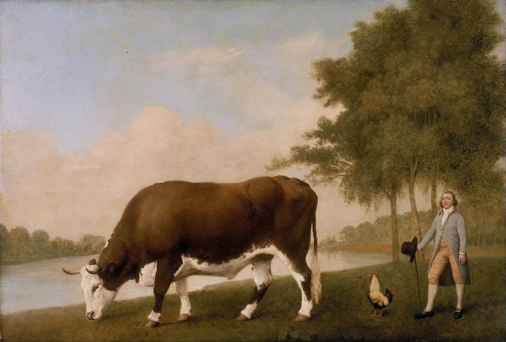 George Stubbs : artiste peintre et anatomiste.  George19