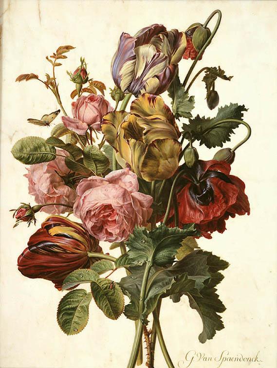 La peinture des fleurs : Sophie de Fuligny-Damas, marquise de Grollier Gerard11