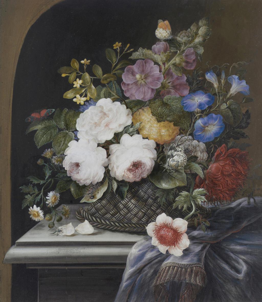"Madeleine-Françoise Basseporte (1701-1780), première femme "" Peintre du jardin du Roi "" Image17"