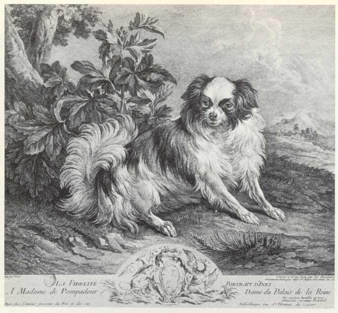 La marquise de Pompadour - Page 3 Ines1010