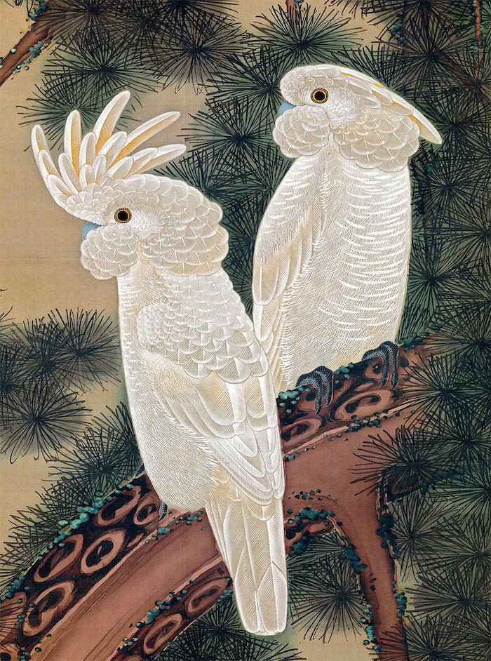 Exposition : Jakuchū (1716-1800), le Royaume coloré des êtres vivants Jakuch12
