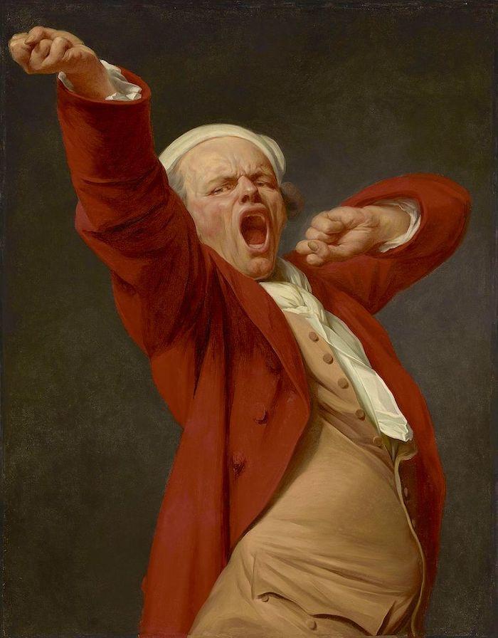 Le peintre Joseph Ducreux Joseph13
