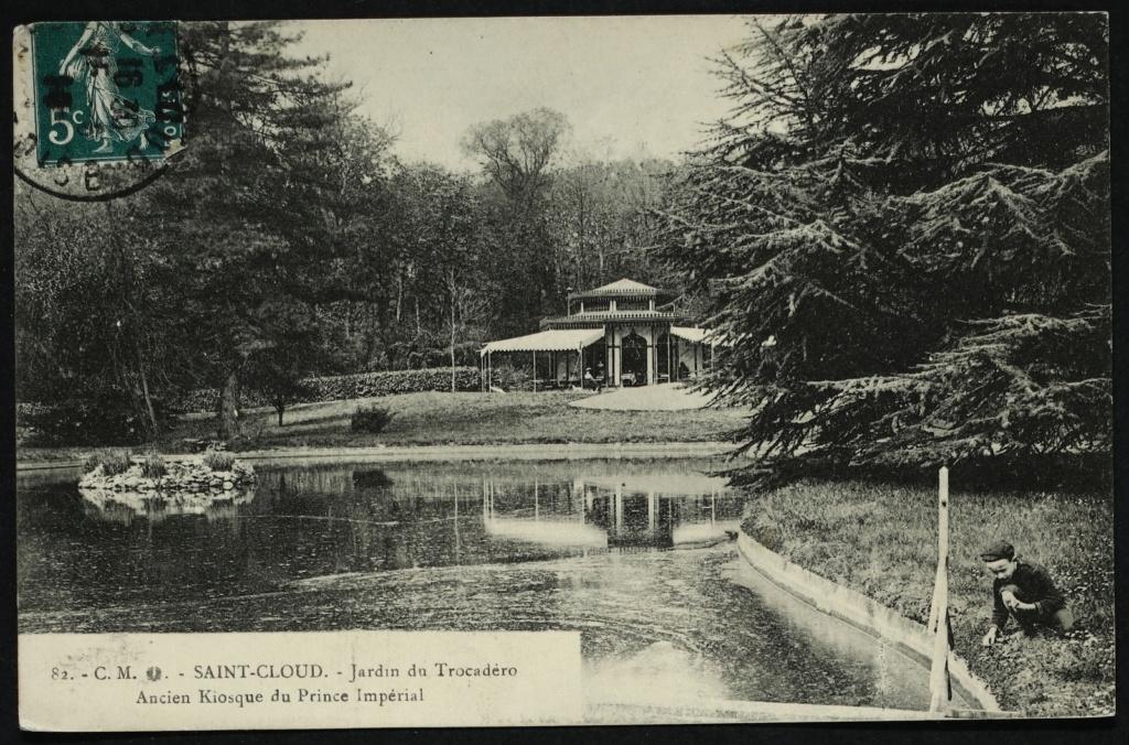 Les cèdres de Marie-Antoinette, jardin du Trocadéro, parc de Saint-Cloud Large-15