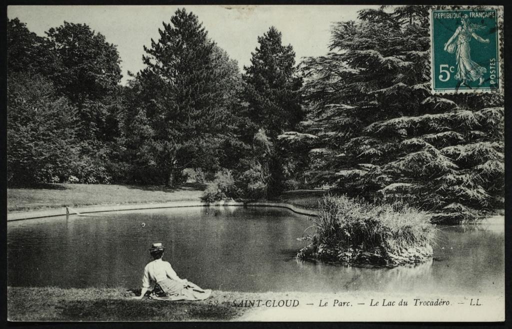 Les cèdres de Marie-Antoinette, jardin du Trocadéro, parc de Saint-Cloud Large-16