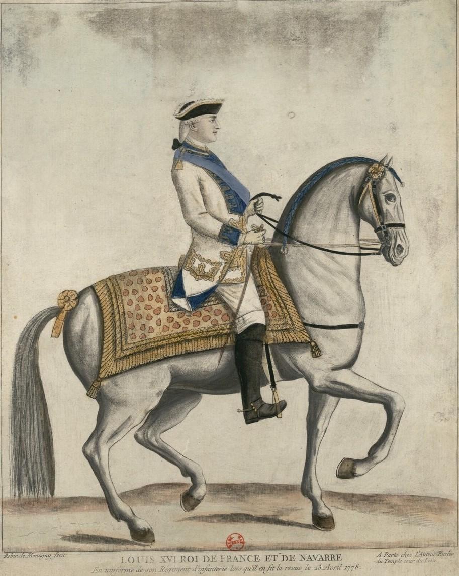 Série d'estampes : portraits équestres de Robin de Montigny  Louis_65