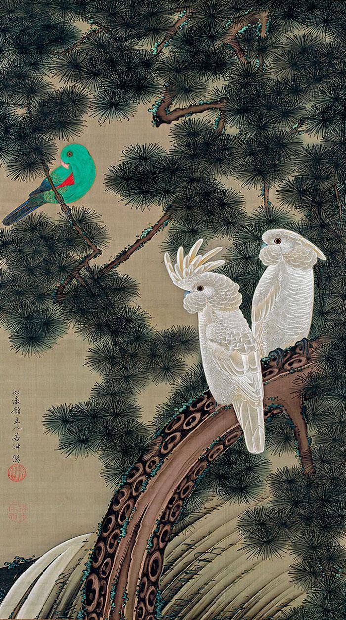 Exposition : Jakuchū (1716-1800), le Royaume coloré des êtres vivants Xii_vi10