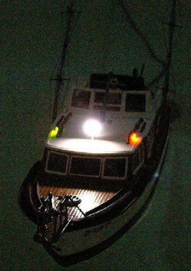 Sport Fishing Boat von Revell mit RC Imag0014