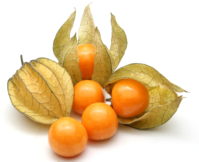 Peruanska jagoda--physalis peruviana 145