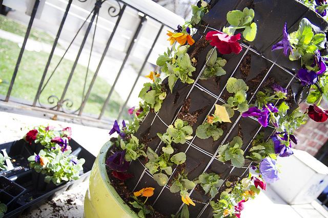 Viseće saksije- cvijetni stubovi.. A144