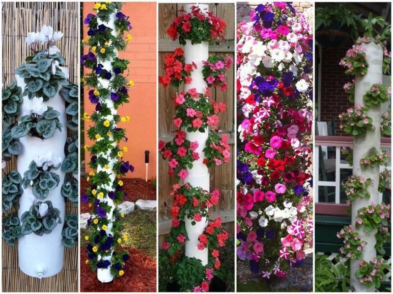 Viseće saksije- cvijetni stubovi.. Cvetni10