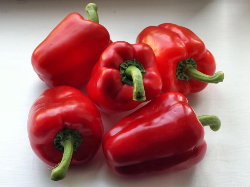 Paprika--Capsicum annuum  P211