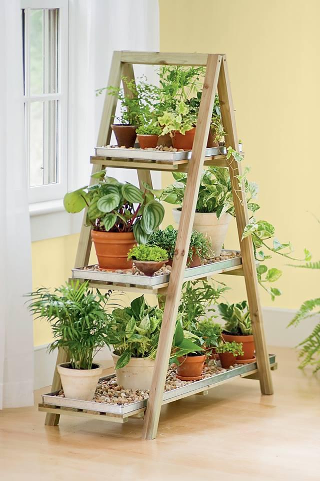 Stalci i police za biljke.. P412