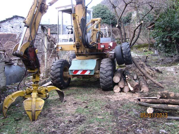 Escavatori nel bosco Aa10