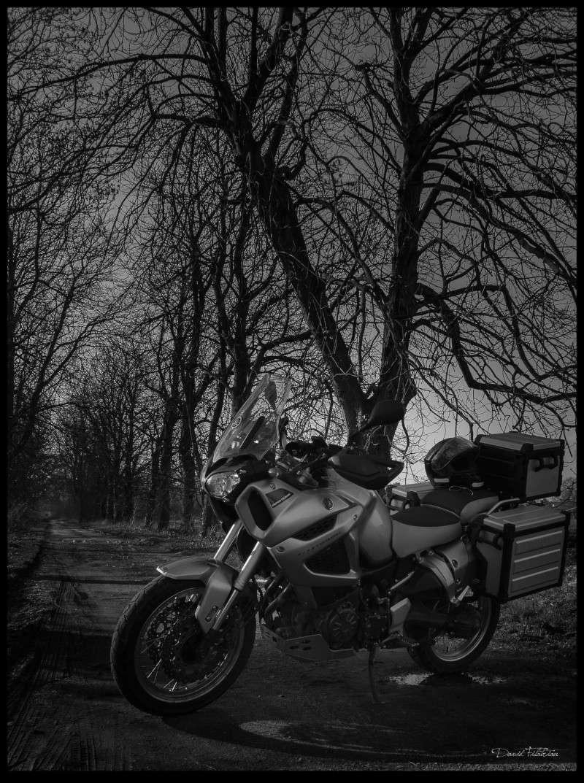 Vos plus belles photos de moto - Page 37 Baie_d12