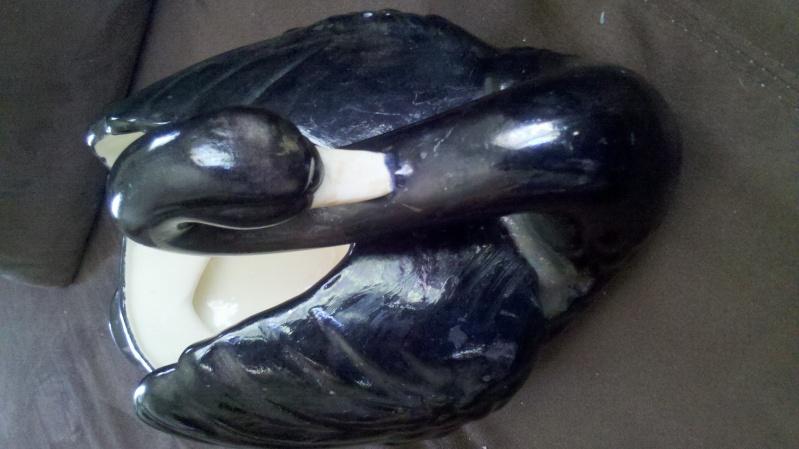 unmarked black swan 2014-016