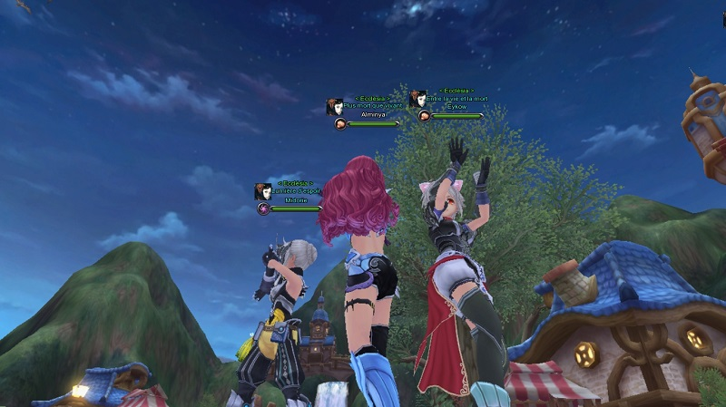 Une guilde tout à fait normale avant un eido-guilde. Snapsh14