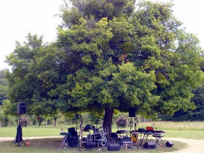 Concert en plein air pour les Amis de Durot 13 juillet 2009 9fa31510