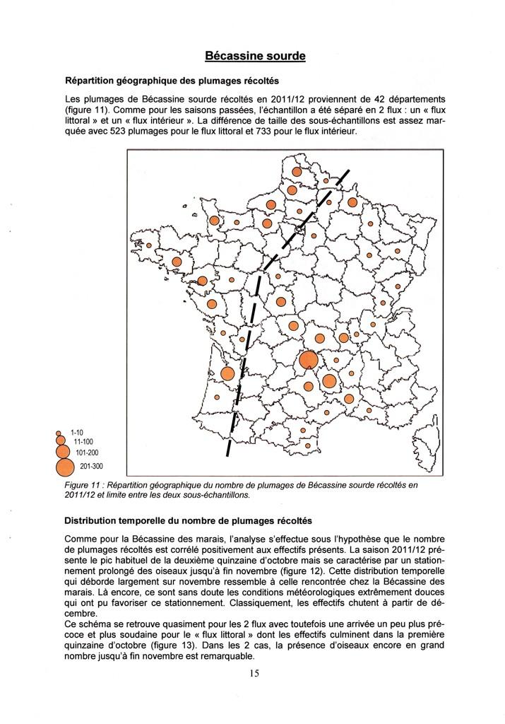 Réseau Bécassines France Bilan Saison 2011-2012 P1510