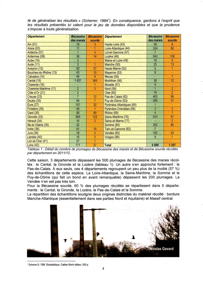 Réseau Bécassines France Bilan Saison 2011-2012 P411
