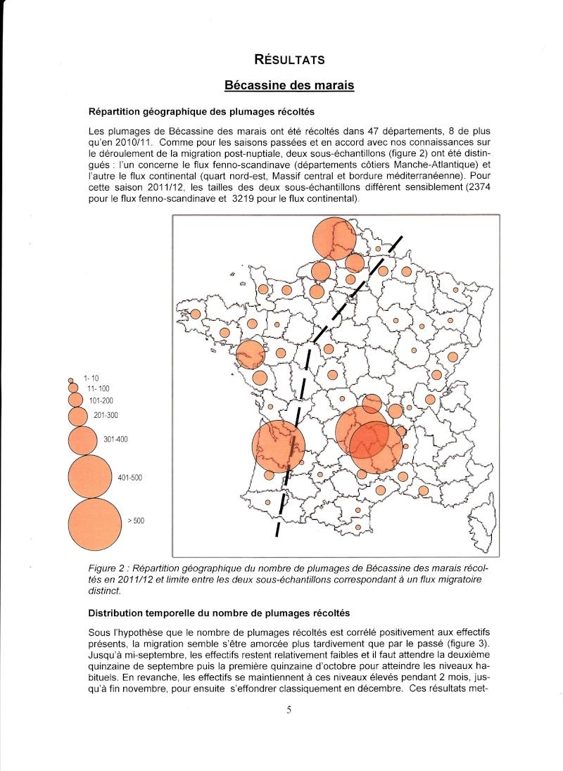 Réseau Bécassines France Bilan Saison 2011-2012 P511