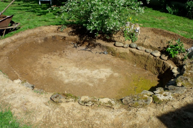 bassin dans mon jardin.