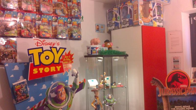 fan de toy story 511