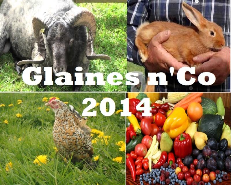 2014 - Glaines n'Co 2014 Sans_t10