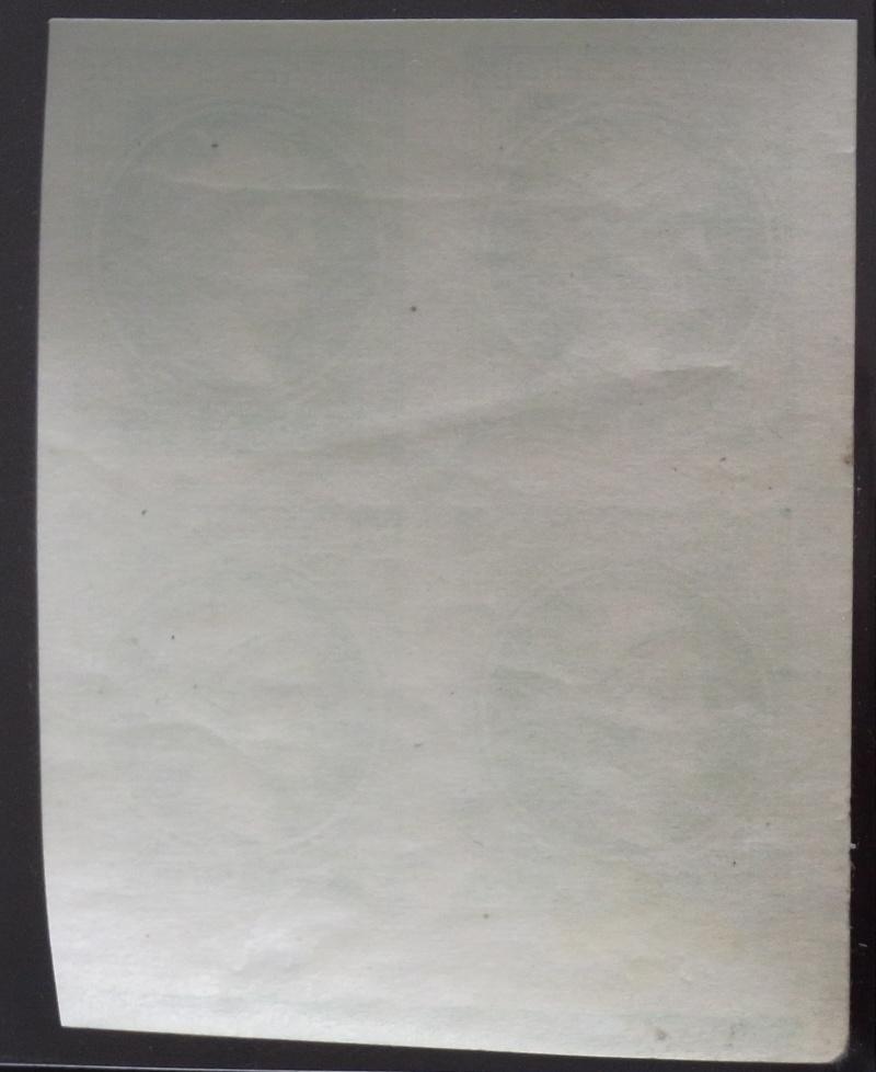 DIE ZEITUNGSMARKEN AUSGABE 1880 Rimg0086