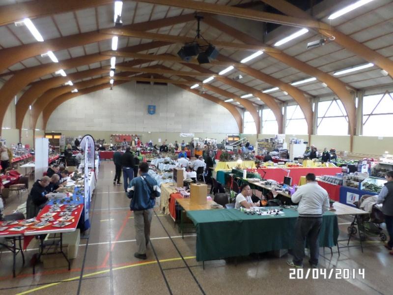 Expo AULNAT (63) - 19 et 20 avril 2014 Sam_2511