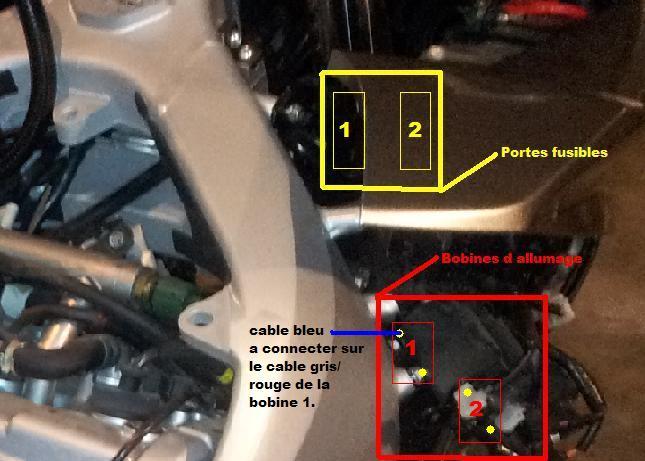 Installation d'un Régulateur de Vitesse sur FJR 1300 (TUTO). Cable_11