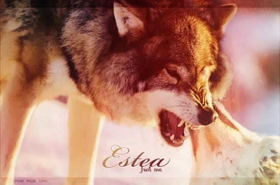 Estea Estea10