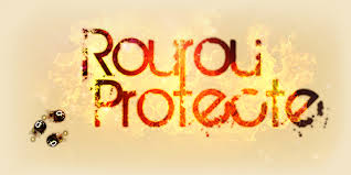 Candidature Ex-ceptions Rourou10