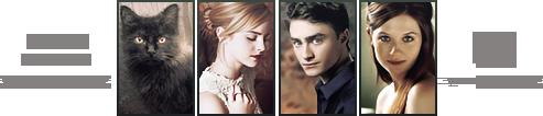Imperius Hogwarts Confirmación { élite } Staff_11