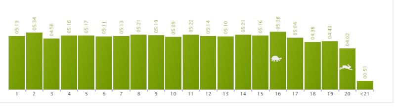 Didou 80 : Transition avant Marathon Octobre 2014 0105a10