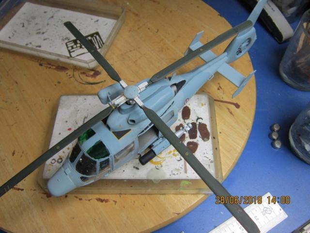 SA.365F/AS.565SA Dauphin II (1/48° de Kitty Hawk) Img_7114