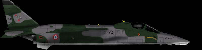 sepecat jaguar A (1/48 de kitty hawk) fini- rajout de la mise en situation Jaguar14