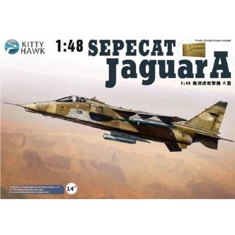 sepecat jaguar A (1/48 de kitty hawk) fini- rajout de la mise en situation Sepeca10