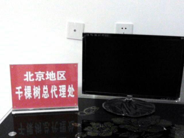 公司分支机构北京地区千棵树总代理处成立 Aauaac10
