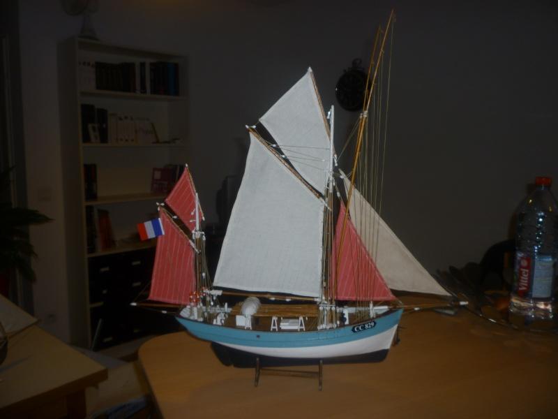 Marie-Jeanne  de billing boats au 1/50° P1010612