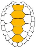Le carré magique Luo Shu Luo_510